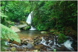 waterfallDSC_3031frame